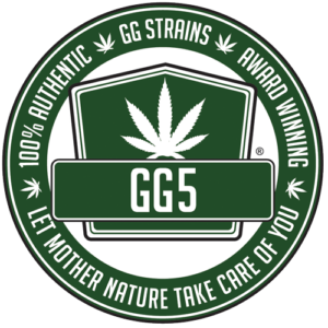 Gorilla Glue 5 - New Glue GG5